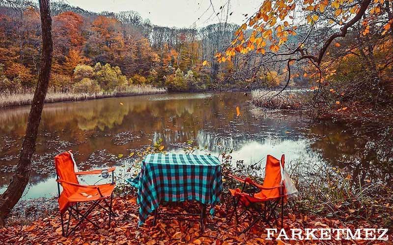 İstanbul Kamp Alanları : Belgrad Ormanları