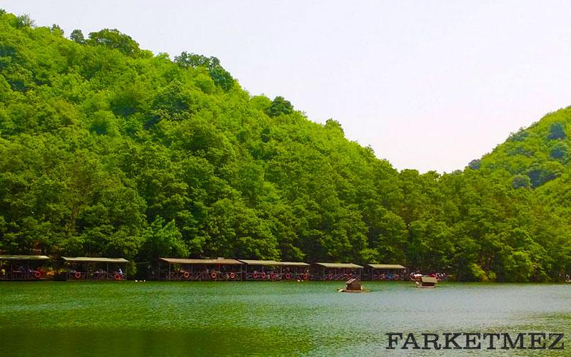 İstanbul Kamp Alanları : Şile Saklıköy